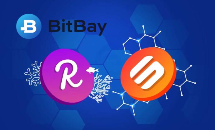 bitbay reef swipe